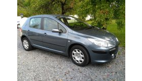 Copie_de_Peugeot_307_10_grid.jpg