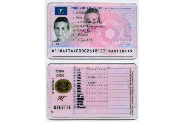 French_driving_license_2013_gallery.png