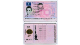 French_driving_license_2013_grid.png