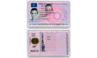 French_driving_license_2013_list.png