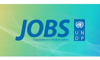 undp-jobs-logo_list.jpg