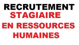Ressources-Humaines-stagiaires-rhcom_grid.jpg