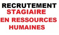 Ressources-Humaines-stagiaires-rhcom_list.jpg
