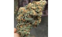blue-dream-strain_list.jpg