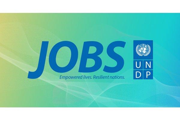undp-jobs-logo_gallery.jpg