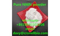 nmn_powder_manufacturer_list.jpg