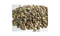 1599214909Feminized-Seed-Variety-Pack_list.jpg